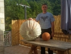 FOTO: Marin uzgojio tikvu tešku 55 kg