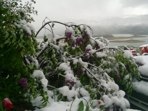 FOTO: Proljetni snijeg zabijelio Ramu