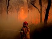 Novim Zelandom hara jedan od najvećih požara u povijesti te zemlje