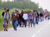 Koliko se migranata u ovom trenutku nalazi u BiH?