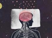 "Tijekom duboka sna mozak čisti ""otpad"""