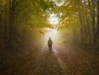 Ostao bez benzina i otišao u šumu, a vratio se 27 godina kasnije