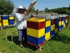 Od pčelarstva se može živjeti