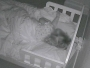 Evo kako vas hakeri špijuniraju tijekom noći - dok spavate!