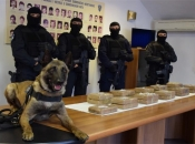 Uskok otkrio kako su dileri preko Ploča krijumčarili 73 kilograma droge