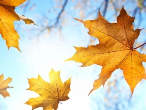 Dolazi nam topla jesen