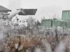 U Češkoj opet ptičja gripa