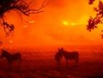 Požari izazvani tisućama munja bjesne Kalifornijom