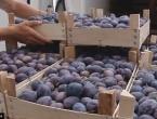 Izvoz iz BiH veći za 17,9 posto, a uvoz 12,6 posto