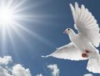 Organizira se odlazak na duhovnu obnovu kod fra Ive Pavića u Šurkovac