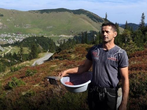 Marko živi od prodaje šumskih plodova, kristala i žaba