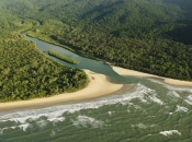 Jedna od najstarijih prašuma na svijetu vraćena tradicionalnim vlasnicima