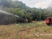 Kiša ugasila većinu požara u Hercegovini