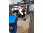 Fotografija talijanske chefice sklupčane na kuhinjskom podu simbol je očaja zbog novog lockdowna