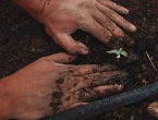 Europska unija nudi poticaj poljoprivrednicima