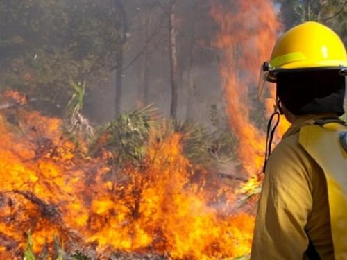 Zbog požara u Jablanici vatrogasci ponovno na terenu