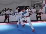 KK EMPI: U Čitluku osvojeno 20 medalja