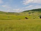 Arapi kupuju zemljišta i na Rostovu