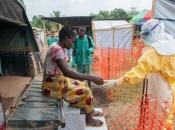 1.000 umrlih od ebole