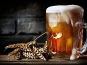 U Izraelu otkrivena pivovara stara 13.000 godina