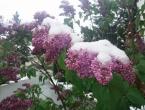 Stručnjaci: Gdje su nestali proljeće i jesen?
