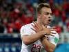 FIFA pokrenula postupke protiv Švicaraca, FSS i Krstajića