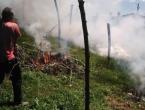 Spalio malinjak od tri dunuma: Ne mogu je davati za 1,5 KM