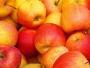 BiH Rusiji podvalila 19 tona jabuka iz Somalije