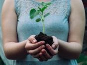 Jablanica se obvezala da će svaki godine zasaditi najmanje 500 sadnica