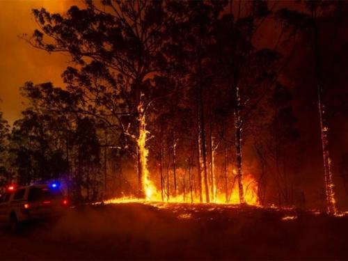 Razorni požari i ekstremne temperature mogli bi postati uobičajeni