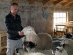 """Veterinar Marinko uzgaja najplodnije ovce: Nije mi jasno što ljudi idu u """"bijeli svijet"""""""