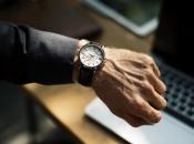Četiri do pet sati rada dnevno je idealno