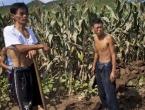 Više milijuna stanovnika Sjeverne Koreje je gladno