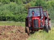 Miholjsko ljeto pogoduje poljoprivredi kojoj vrijeme ove godine nije išlo na ruku