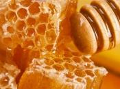 BiH: Otkriven nekvalitetni domaći i uvozni med
