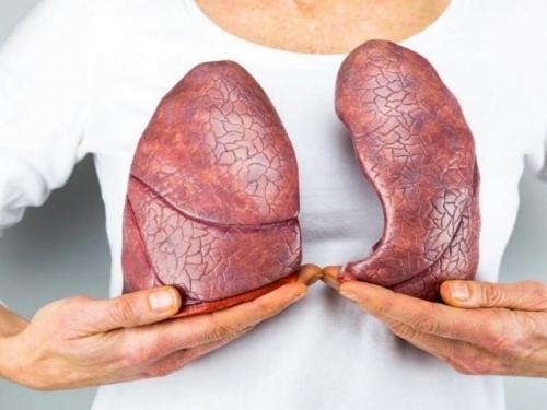 Namirnice koje čuvaju pluća