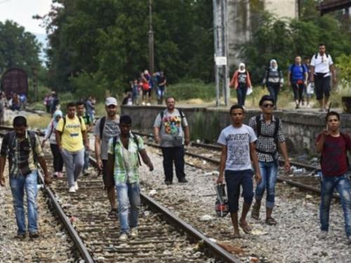 U BiH razbijena kriminalna skupina koja je krijumčarila migrante u Hrvatsku
