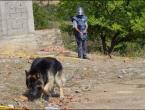 Stotine pasa obučenih u BiH traže mine kod nas i u 11 zemalja svijeta