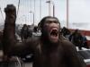 Kada se znanost poigra - ubacili ljudski gen i povećali mozak majmuna