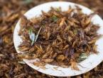 Znanstvenici: Zdravo je jesti cvrčke