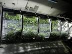 Astronauti će uskoro uzgajati hranu u svemiru