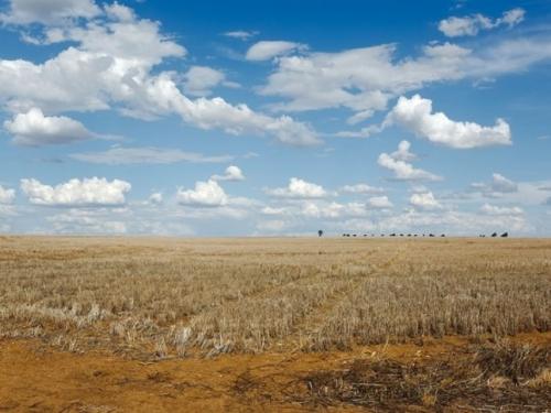 Nezapamćena suša pogodila Španjolsku i Portugal
