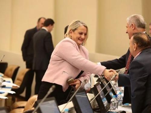 Škoro registrirao Domovinski pokret u BiH, Diana Zelenika moguća predsjednica stranke