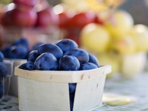 Sadnja šljiva iz koštica – iskoristite najjednostavniji način sadnje