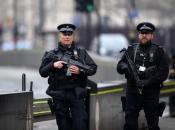 Policajci napadnuti tijekom rastjerivanja ilegalne noćne zabave