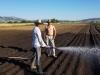 Od uzgoja mrkve se može odlično zaraditi, očekuje zaradu od 150 tisuća maraka