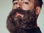 U muškoj bradi više štetnih bakterija nego u psećem krznu
