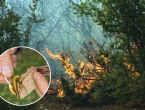 Usred noći podmetnuo požar, pa pokušao pobjeći policiji