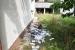 FOTO| Zločin na Ilidži: Ubijeni migrant pronađen vezan, istražitelji tragaju za počiniteljima