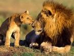 Čak 4.400 životinjskih vrsta pred izumiranjem